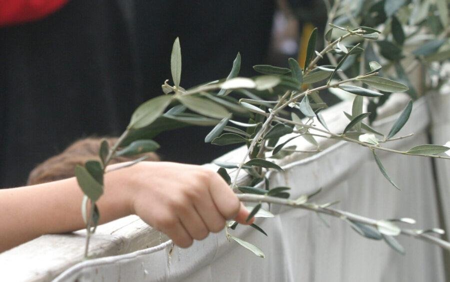 CITTA' DEL VATICANO 04-04-2004 PIAZZA SAN PIETRO DOMENICA DELLE PALME UN RAGAZZINO CON IL RAMOSCELLO DI ULIVO